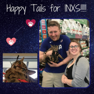 HUGE Happy Tails! We are so beyond thrilled to share the news from Motley Zoo Animal Rescue that INXS has found her forever home! This adorable, but more demure, independent little feline took a while to find just the right match, but she is proof that the purrfect furever home is out there! INXS started her journey at Motley Zoo in August 2017 and came into the WNM campaign a little over a year ago. Congratulations INXS- you truly are a rockstar, as is the family who knew that you were their special girl! Thanks to Q13 FOX/ JOEtv, Pet Connection Magazine, Healthy Paws Pet Insurance, Dirtie Dog Photography, and all our supporters/ followers for helping share INXS's story along the way. Thank you for letting #WhynotMEpets be part of her journey. All the best to you courageous kitty! #adopted #happytails #purrfect: Happy Tails for HUGE Happy Tails! We are so beyond thrilled to share the news from Motley Zoo Animal Rescue that INXS has found her forever home! This adorable, but more demure, independent little feline took a while to find just the right match, but she is proof that the purrfect furever home is out there! INXS started her journey at Motley Zoo in August 2017 and came into the WNM campaign a little over a year ago. Congratulations INXS- you truly are a rockstar, as is the family who knew that you were their special girl! Thanks to Q13 FOX/ JOEtv, Pet Connection Magazine, Healthy Paws Pet Insurance, Dirtie Dog Photography, and all our supporters/ followers for helping share INXS's story along the way. Thank you for letting #WhynotMEpets be part of her journey. All the best to you courageous kitty! #adopted #happytails #purrfect