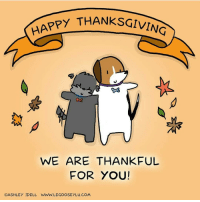 Happy Thanksgiving from my family to yours 🐯🐶 🍃🍁🍂 happythanksgiving: HAPPY THANKSGIVING  WE ARE THANKFUL  FOR YOU!  OASHLEY IDELL WWW. LEGOOSEYLU.COM Happy Thanksgiving from my family to yours 🐯🐶 🍃🍁🍂 happythanksgiving