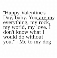 """Memes, 🤖, and You Me: """"Happy Valentine's  Day, baby. You are my  everything, my rock,  my world, my love. I  don't know what I  would do without  you  Me to my dog You're my everything and I'll never let you forget it 🐶 @tasteslikesarcasm"""
