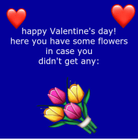 Funny Valentines Day: happy Valentine's day!  here you have some flowers  in case you  didn't get any: