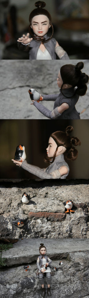 Funny, Rey, and Tumblr: happyreylo:  Rey and the PorgsA long time ago in a garden Far far away…JK there she is Rey with new hands and a lovely face; I did the ports and Waz take the lovely photos and did the hands…and the expression. Its not Hot toys but its really funny to look
