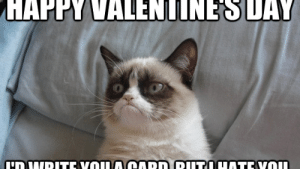 10 Anti-Valentine's Day Memes For People Who Are So Over Romance: HAPPYVALENTINESDAY 10 Anti-Valentine's Day Memes For People Who Are So Over Romance