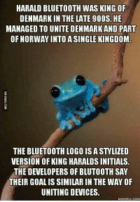 Bluetooth: HARALD BLUETOOTH WAS KING OF  DENMARK IN THE LATE 900S. HE  MANAGED TO UNITE DENMARK AND  PART  OF NORWAY INTOASINGLE KINGDOM  LOGO ISASTYLIZED  VERSION OF KING HARALDSINITIALS  THE DEVELOPERS OF BLUTOOTH SAY  THEIR GOALISSIMILARE IN THE WAY OF  UNITING DEVICES  MEMEFUL COM
