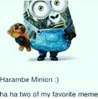 i have diabetes and autism from this: Harambe Minion  ha ha two of my favorite meme i have diabetes and autism from this