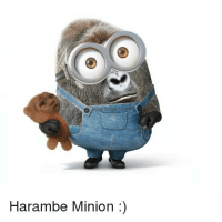 Harambe Minion ha ha two of my favorite memes :)