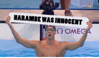 Dank, 🤖, and Omegal: HARAMBE WASINNOCENT  Q OMEG Phelps really went there
