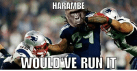Of course he would have: HARAMBE  WOULD WE RUN IT Of course he would have