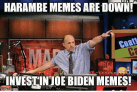 Ugh: HARAMBEMEMES ARE DOWN!  INVESTINJOE BIDEN MEMES! Ugh