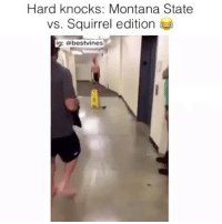 ⠀ 🌱These Football Players Are Soft! 😂: Hard knocks: Montana State  vs. Squirrel edition  ig: @bestvines ⠀ 🌱These Football Players Are Soft! 😂