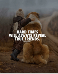 Friends, Memes, and True: HARD TIMES  WILL ALWAYS REVEAL  TRUE FRIENDS.  DSUCCESSES I would agree! - - Friend Strong