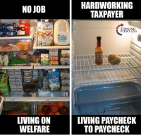 Yup... #SocialismSucks: HARDWORKING  TAXPAYER  NO JOB  Slk  Pur Purelmond  TURNING  POINT USA  on  LIVING ON  WELFARE  LIVING PAYCHECK  TO PAYCHECK Yup... #SocialismSucks