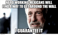 Life, uh, finds a way: HARDWORKINGMEXICANS WILL  FINDA  TOGETAROUND THE WALL  GUARANTEE IT Life, uh, finds a way