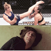 Holly Holm, Memes, and 🤖: HARLEM I  AS SHOPPED AS IT GETS Holly Holm with the win.