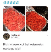Bitch, Jail, and Memes: Harley  @Coldd  Bitch whoever cut that watermelon  needa go to jail 😩