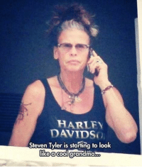 HARLEY  Steven Tyler is starting to look  like a cool grand