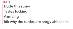 Meirl: HARLI  Dude this straw  Tastes fucking  Azmaing  Idk why the turtles are anrgy ahhahaha Meirl