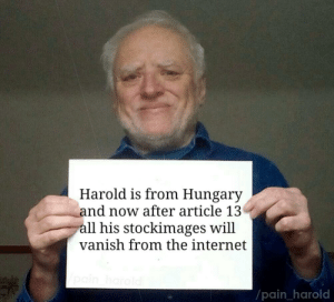 Dank, Internet, and Memes: Harold is from Hungary  and now after article 13  all his stockimages will  vanish from the internet  pain _harold Goodbye old friend by iRealretard MORE MEMES