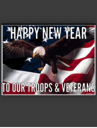 Memes, New Year's, and 🤖: HARPY NEW YEAR  TO OUR TROOPS & VETERANS