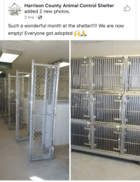 "Memes, Target, and Tumblr: Harrison County Animal Control Shelter  added 2 new photos  2 hrs  Har  Such a wonderful month at the shelter!!!! We are now  ""  empty! Everyone got adopted  鲁 positive-memes:  They all got adopted!!!"