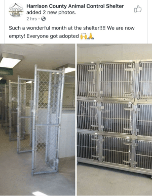 The shelter may be empty, but so many hearts are full!: Harrison County Animal Control Shelter  added 2 new photos  Haison Ceunttninal  Conthel  2 hrs  Such a wonderful month at the shelter!!!! We are now  empty! Everyone got adopted The shelter may be empty, but so many hearts are full!