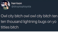 Bitch, Titties, and Yo: harrison  @droptoptoyota  Owl city bitch owl owl city bitch ten  ten thousand lightning bugs on yo  titties bitch