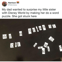 PLS sENd hELP: Harrison  @Tallandsaxy  My dad wanted to surprise my little sister  with Disney World by making her do a word  puzzle. She got stuck here  D IB PLS sENd hELP