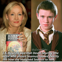 Harry Potter, Memes, and J. K. Rowling: HARRV  POTTE  tter  J.  K Rowling said that Devon Murray (the  actor who played Seamus) looked exactly  like how she imagined Seamus to look. Out of 10, how much do you like Seamus? ✨ ♔ Tag a friend who loves Harry Potter too! 😊💕 ◇ Potterheads⚡count: 146,795