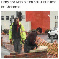 Christmas, Funny, and Memes: Harry and Marv out on bail. Just in time  for Christmas @funny is a must follow 😂
