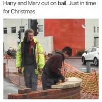 Christmas, Time, and Harry: Harry and Marv out on bail. Just in time  for Christmas 😂😂😂