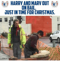 Memes, Time, and 🤖: HARRY AND MARV OUT  ON BAIL  JUST IN TIME FOR CHRISTMA  @ameri Kevin's had a few decades to prep.