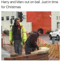Harry And Marv