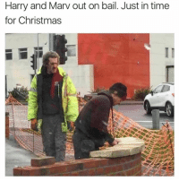Memes, 🤖, and Harry: Harry and Marv out on bail. Just in time  for Christmas If she doesn't get the reference, she's too young for you bro.