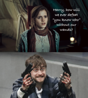 "How, Who, and Harry: Harry, how will  we ever defeat  ""you know who""  without our  Wands?  0  0"