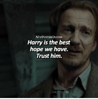 Memes, Best, and What Is: Harry is the best  hope we have.  Trust him. Q: What is Remus Lupin's Animagus?👇🏻 • Follow @mypotterfacts @bookgasms and @mypotterscenes for more of my posts!⚡️