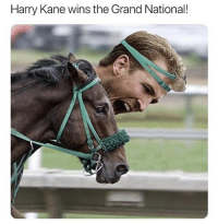 He claims he clearly crossed the line first 🙄: Harry Kane wins the Grand National! He claims he clearly crossed the line first 🙄