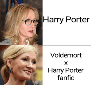 Harry Porter Voldemort Harry Porter Fanfic This Is Her End