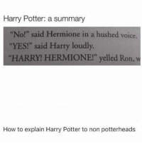 """{ funnytumblr textposts funnytextpost tumblr funnytumblrpost tumblrfunny followme tumblrfunny textpost tumblrpost haha}: Harry Potter: a summary  """"No!"""" said Hermione in a hushed voice.  """"YES!"""" said Harry loudly.  """"HARRY! HERMIONE!"""" yelled Ron, w  How to explain Harry Potter to non potterheads { funnytumblr textposts funnytextpost tumblr funnytumblrpost tumblrfunny followme tumblrfunny textpost tumblrpost haha}"""