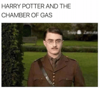 Harry Potter: HARRY POTTER AND THE  CHAMBER OF GAS