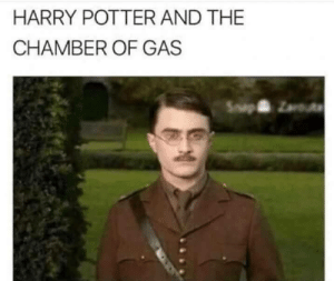 Harry Potter, Memes, and Potter: HARRY POTTER AND THE  CHAMBER OF GAS MAKE WAY via /r/memes https://ift.tt/2IzkxHq