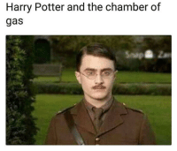 funny harry potter: Harry Potter and the chamber of  gas