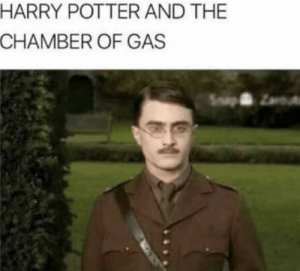 Harry Potter, Potter, and Nazi: HARRY POTTER AND THE  CHAMBER OF GAS Your a Nazi Harry.