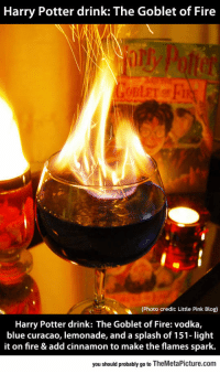 "<p><a href=""http://laughoutloud-club.tumblr.com/post/166119277571/the-goblet-of-fire"" class=""tumblr_blog"">laughoutloud-club</a>:</p>  <blockquote><p>The Goblet Of Fire</p></blockquote>: Harry Potter drink: The Goblet of Fire  (Photo credit: Little Pink Blog)  Harry Potter drink: The Goblet of Fire: vodka,  blue curacao, lemonade, and a splash of 151- light  it on fire & add cinnamon to make the flames spark.  you should probably go to TheMetaPicture.com <p><a href=""http://laughoutloud-club.tumblr.com/post/166119277571/the-goblet-of-fire"" class=""tumblr_blog"">laughoutloud-club</a>:</p>  <blockquote><p>The Goblet Of Fire</p></blockquote>"