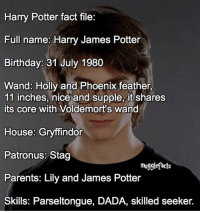 Gryffindor, Memes, and Phoenix: Harry Potter fact file:  Full name: Harry James Potter  Birthday: 31 July 1980  Wand: Holly and Phoenix feather,  11 inches, nice and supple, it shares  its core with Voldemort's wand  House: Gryffindor  Patronus: Stag  mugglefacts  Parents: Lily and James Potter  Skills: Parseltongue, DADA, skilled seeker. qotd : would you like it if i also started to post fact files? fc: 68,3k Idea creds: @quibblerfacts