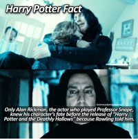 """Memes, Alan Rickman, and Harry Potter and the Deathly Hallows: Harry Potter  Fact  THEPHILOSOPHERSTONES  Only Alan Rickman, the actor who played Professor Snape,  knew his character's fate before the release of """"Harry  Potter and the Deathly Hallows because Rowling told him. is typing... ⠀⠀⠀⠀⠀⠀⠀⠀► 84.4k followers◄ — ✿ — Alan Rickman, my love❤ — ✿ — Q; favorite professor? - A; Snape or McGonagall — ✿ — Follow my other accounts: → @TheHagrids (my textpost account) → @FictionalNovels (my bookstagram) → @TheFandomAlley (my fandom merch shop) — ✿ — [ philosopherscenes philosopher1k] — ✿ — © ThePhilosopherStones 