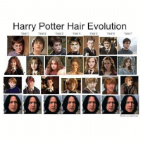 qotd: what hogwarts house are you? (bonus if you tell me your ivermorny) hufflepuffpride 💫: Harry Potter Hair Evolution  Year 1  Year 2  Year 3  Year 4  Year 5  Year 6  Year 7  000@O00  WeKnowMemes qotd: what hogwarts house are you? (bonus if you tell me your ivermorny) hufflepuffpride 💫