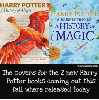 What do you think about these? Are you excited? . . . . . . __________________________________________________ __________________________________________________ harrypotter potterhead wizardingworld wizardingworldofharrypotter gryffindor hufflepuff slytherin ravenclaw hogwarts hogwartsismyhome bookstagram hermione sharethemagic hermione bookworm ronweasley voldemort harrypotterfacts hpfacts snape dracomalfoy fangirl hp facts fandom emmawatson fantasticbeasts fbawtft: HARRY POTTER  History of Magic  HARRY POTTER  A JoURNEY THROUGH  $A HISTORYoF  dtadum  plaul uo  to  MAGIC  am  ting arnficts  tsb Lisrary's  bbires,  tep  HARRY POTTEN  The spellsinding companion  to a unique exhibition  HISTORT MaGIC  BLOOMSBURY  BLOOMSBURY  OTheQuibblerDaily  The covers for the 2 new Harry  Potter books coming out this  fall where released today What do you think about these? Are you excited? . . . . . . __________________________________________________ __________________________________________________ harrypotter potterhead wizardingworld wizardingworldofharrypotter gryffindor hufflepuff slytherin ravenclaw hogwarts hogwartsismyhome bookstagram hermione sharethemagic hermione bookworm ronweasley voldemort harrypotterfacts hpfacts snape dracomalfoy fangirl hp facts fandom emmawatson fantasticbeasts fbawtft
