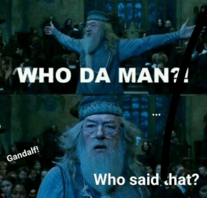 Harry Potter memes are the best: Harry Potter memes are the best
