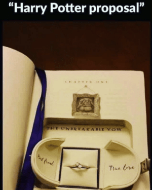 "Harry Potter, Pictures, and Potter: ""Harry Potter proposal""  Thue Crve 10+ Pictures That Will Say ""WHY DO THAT???"""