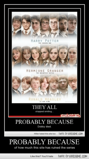 Probably Because http://omg-humor.tumblr.com: HARRY POTTER  THE CHOSEN ONE  HERMIONE GRANGER  THE BRIGHTEST MITCH  RONALD WEASLEY  IS OUR KING  THEY ALL  stopped smiling.  TASTE OF AWESOME.COM  PROBABLY BECAUSE  Dobby died.  TASTE OF AWESOME.COM  Hitler hated this site to0  PROBABLY BECAUSE  of how much this site has ruined the series  TASTE OF AWESOME.COM  Like this? You'll hate Probably Because http://omg-humor.tumblr.com