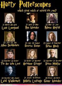 Who are you? ~STORMAGEDDON, DARK LORD OF ALL: Harry Potterscopes  which great witch or wizard are you?  22 May-21 June  21 March-20 April  21 April-21 May  Luna Lovegood Ron Weasley Rubeus Hagrid  22 June-22 July  23 July-22 August  23 August-21 September  Albus Dumbledore  Severus Snape Sirius Black  22 September-22 October  23 October-21 November 22 November-21 December  The Boy who Lived Hermione Granger Draco Matfoy  22 December-20 January  21 Janoty -19 Fbraty 20 Febraty-20 March  Lord Voldemort Bellatrix Lestrange Ginny Weasley Who are you? ~STORMAGEDDON, DARK LORD OF ALL